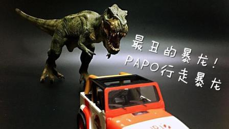 初丁分享054最丑暴龙 PAPO行走暴龙行暴