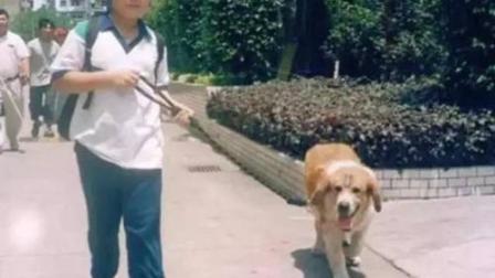 汪星人撒娇: 爱咋地咋地就不走, 说给你找个对象, 狗狗立刻跑起来