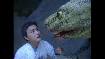 大蛇一出地动天摇,张君宝救过他主人一命,现在大蛇为他解毒报恩