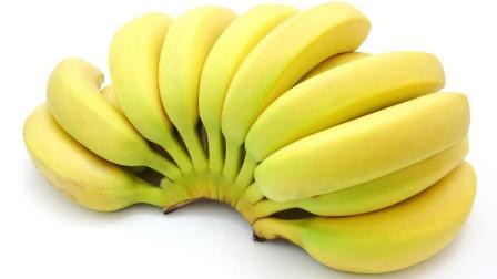 Z028 香蕉介绍, 香蕉简笔画