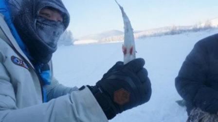 世界最冷的村庄, 上厕所必须带小棍, 否则会有生命危险!