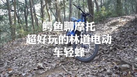 国产电动摩托车轻蜂试驾