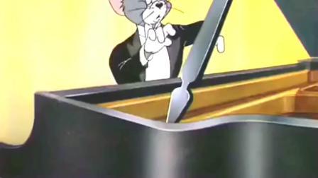 猫和老鼠: 老鼠洞没了, 无家可归的杰瑞只能睡在乐器里了, 这也太搞笑了!