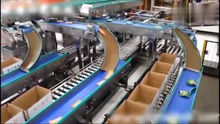 实拍双汇火腿肠的生产过程自动化流水线 输送设备