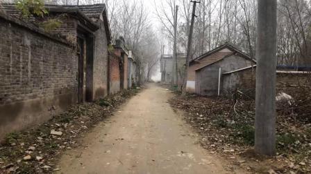 实拍安徽阜阳太和县农村, 村民们都盖起了楼房, 老房子都空了