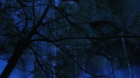这是九叔电影外最厉害的僵尸, 会飞能红外线感应
