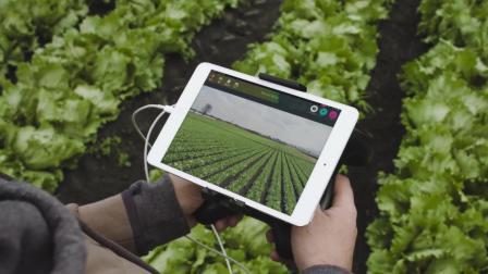 派诺特Parrot Bluegrass 农业农田作物植被检测 应用无人机