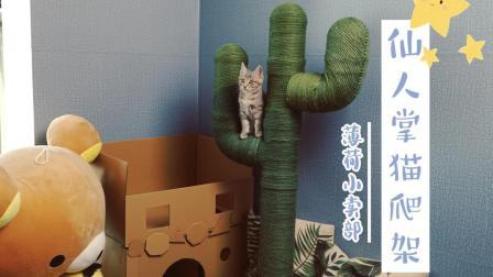 网红猫爬架, 猫猫用了都说好