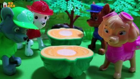 汪汪队玩具故事: 糟糕, 阿奇跑太快撞到了一个大南瓜