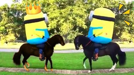 小黄人骑马, 这节奏太魔性了!