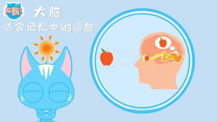 玩疯了方大手不吃鱼 DK玩出来的百科奇特视觉假象
