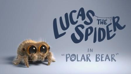 可爱的小蜘蛛卢卡斯,你见过北极熊吗