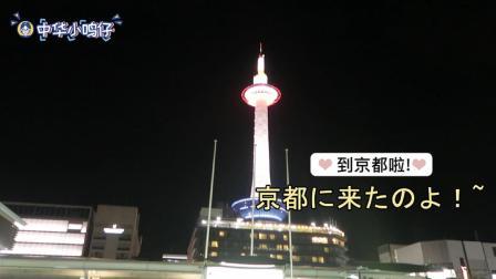 中华小鸣仔 第一季 日本vlog之京都篇! 出行必有风雨, 但是下雨和抹茶更配呢