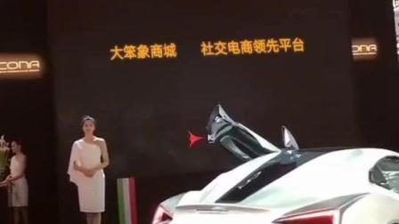 湖南大笨象电子商务有限公司-赞助上海汽车博览会