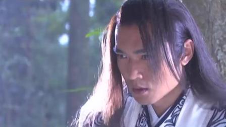 碧血剑: 夏雪宜为了得到金蛇剑, 得到何红药身子, 欺她的感情