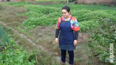苗大姐二斤五花肉三斤葱, 炒上一锅, 吃了米饭一碗