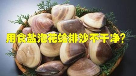 用食盐泡花蛤排沙不干净? 教你3种方法, 让花蛤吐沙又快又彻底!