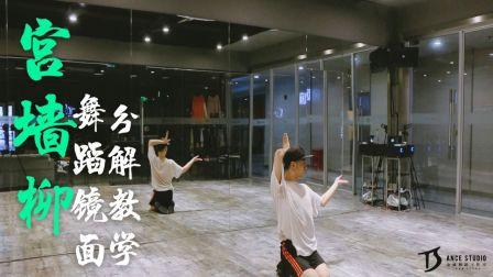 《宫墙柳》中国风编舞镜面分解教学