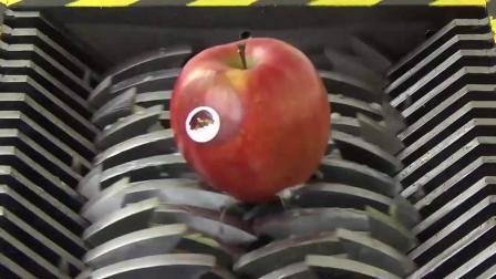 败家: 粉碎机之水果, 柠檬、苹果、香蕉, 还是家里有矿啊