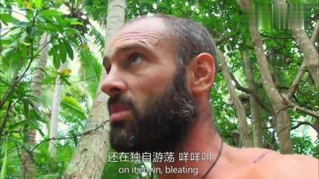 荒岛余生只身在荒岛60天, 德爷最完美的一天, 捉到超大只椰子蟹!