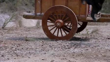 余英男和萧琅先后从马车上滚落 英男的剑柄生出了剑身