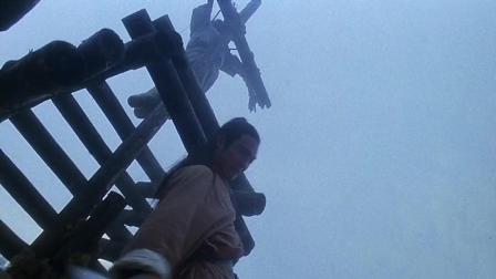 李连杰为了能救功夫女神, 身受重伤, 疯癫三年。