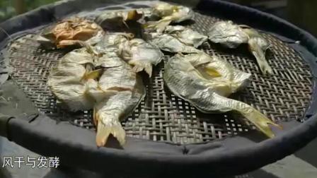 舌尖上的中国: 稻花鱼, 吃了稻花的鲤鱼才最肥美