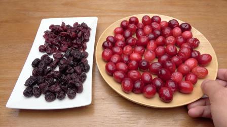 """被称为""""北美红宝石""""的蔓越莓, 它的鲜果你吃过吗?"""