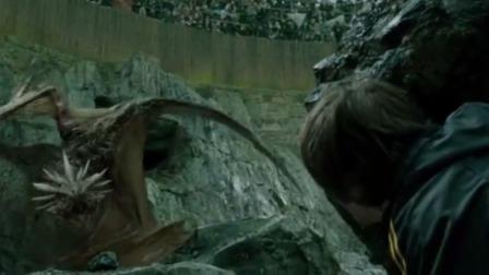在第一轮的比赛中,哈利要在恶龙眼皮下拿走金蛋,真是件头疼的事