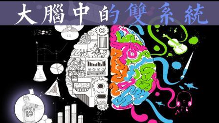 为什么总有人错误地理解我们的意思——人脑中的双系统