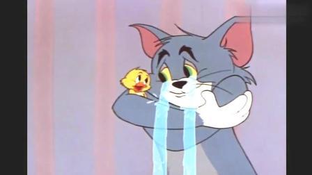 猫和老鼠: 小鸭子不小心感动汤姆, 汤姆决定就不吃鸭子了, 做了一个好母亲吧!