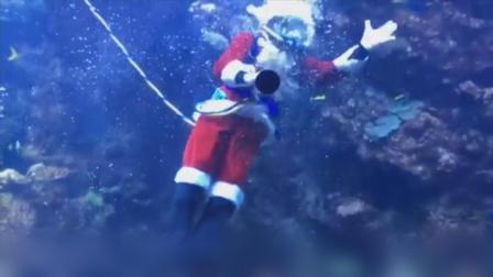 圣诞老人竟然潜入水中与鱼儿嬉戏