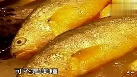 舌尖上的中国: 这里的海鲜市场堪比顶级水族馆! 其中一种都叫不出