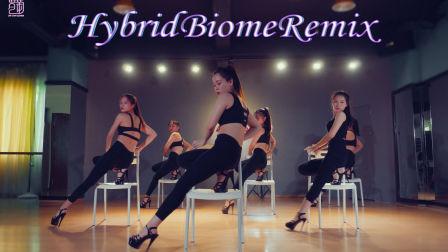 TB秀 HybridBiomeRemix,舞本舞蹈培训学校