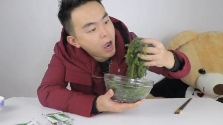 """试吃植物中的鱼子酱""""海葡萄"""", 脆脆的声音, 听着就觉得很好吃"""
