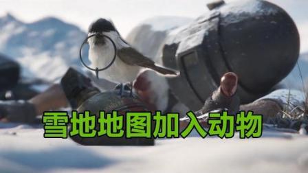 绝地求生: 雪地地图真恐怖, 玩家被击杀后, 小鸟