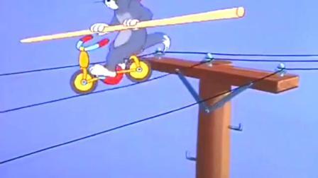 猫和老鼠: 全能! 看了300多集, 还真的是发现汤姆多才多艺呀? 最优秀不过小汤姆!