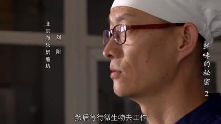 鲜味的秘密 一个中国人,千辛万苦,复制出闻名全球的法国蓝纹奶酪