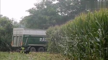 农民拍手叫好的玉米秸秆收割机, 速度快!