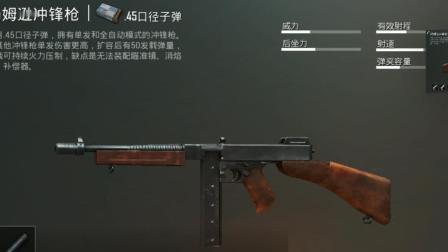 【游物语之胖岳说游戏】刺激战场之汤姆逊冲锋枪的吃鸡性能