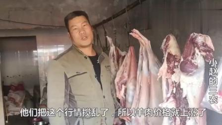为什么羊肉价格一直在涨? 农村宰羊大叔说出真实原因, 是这样吗?