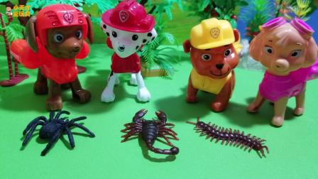 汪汪队玩具故事天天 好可怕啊 怎么有这么多的毒虫子啊