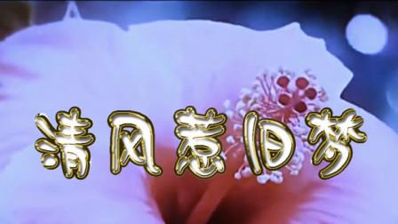 歌曲《清风惹旧梦》黄涛 MV