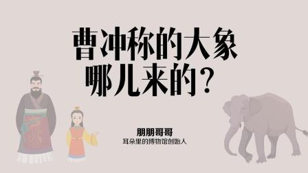 朋朋哥哥——曹冲称的那头大象哪儿来的? 【有意思博物馆】