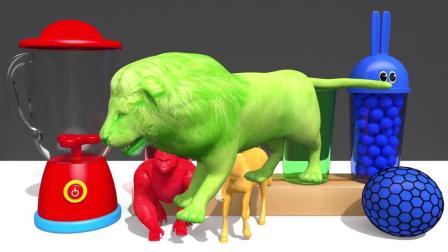 宝宝学颜色,将小球倒入大瓶中,惊喜蛋中藏有小动物,亲子早教