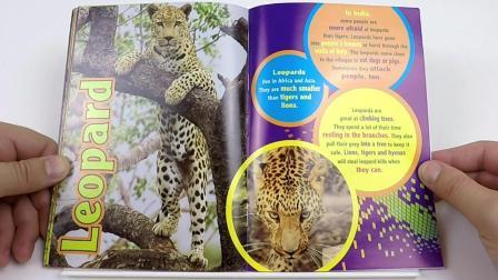 Dangerous Animals Pt. 2 生动有趣的英文绘本阅读 Polar Bear Kids制作