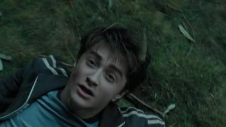 《哈利·波特与阿兹卡班的囚徒》狗灵突袭抓走罗恩,打人柳下藏密道