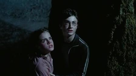 《哈利·波特与阿兹卡班的囚徒》哈利湖边自救,守护神驱散摄魂怪