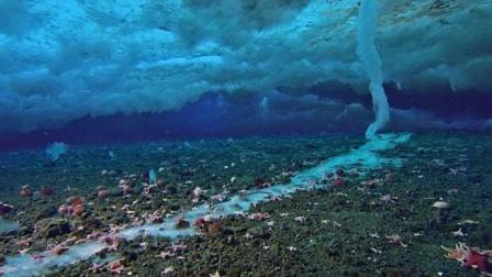"""南极出现""""死亡冰柱"""", 所到之处万物无一生还, 引起科学家警惕"""