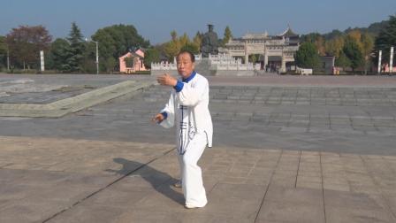 8A.王本 传统99式混养太极拳分解动作